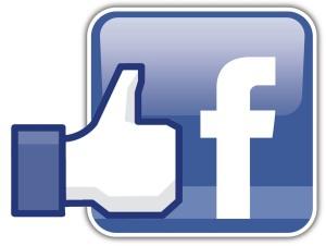 facebook_like_logo_1